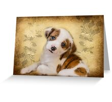 Cutest Puppy Mix Breed  Greeting Card