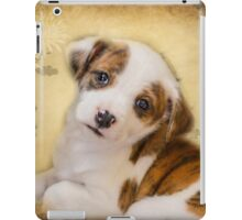 Cutest Puppy Mix Breed  iPad Case/Skin