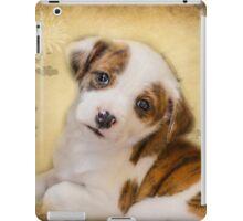 Cutest Puppy Mix Breed  iPad Case/Skin