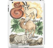 Stone, Earth and Fire iPad Case/Skin