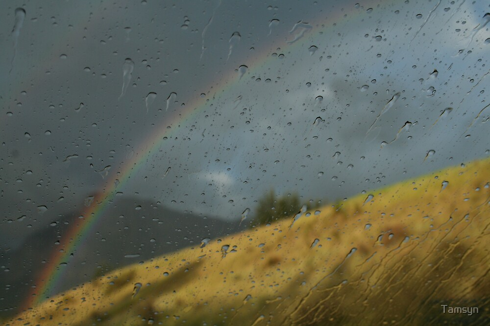 Over the Rainbow by Tamsyn