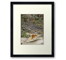 Open Up and Say Ahhh Framed Print
