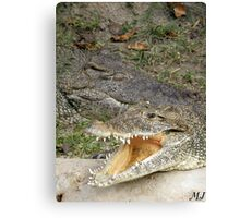 Open Up and Say Ahhh Canvas Print