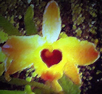FLOWERtoo by YOSEF
