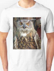 Orange Eyed Owl Unisex T-Shirt