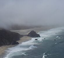 My Beautiful Big Sur by hushpuppygill