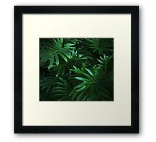 Jungle Leaves Framed Print