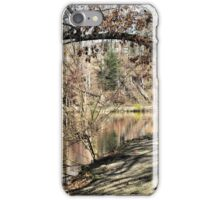 50 Shades of Brown iPhone Case/Skin