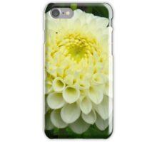 Egg yolk Dahlia iPhone Case/Skin