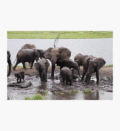 Mud bath Photographic Print