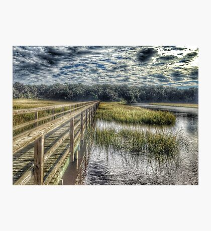 Old House Creek Photographic Print