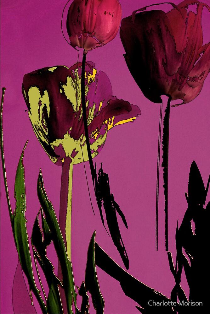 Tulip Farewells by Charlotte Morison