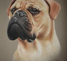 Dog Portrait 01 by Nathan Bye