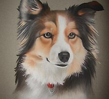 Dog Portrait 03 by Nathan Bye