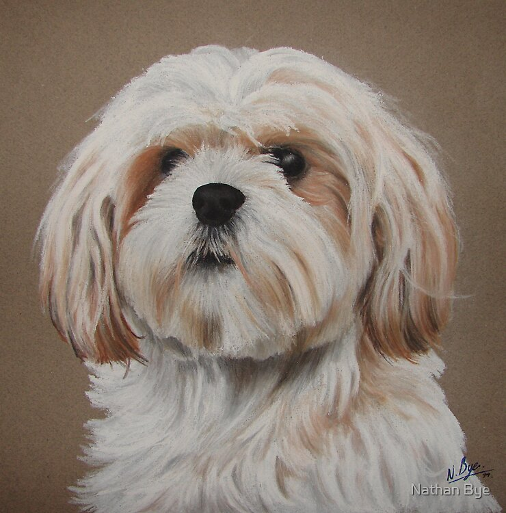 Dog Portrait 04 by Nathan Bye