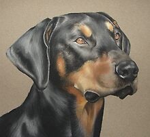 Dog Portrait 05 by Nathan Bye