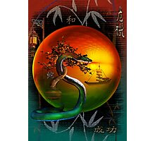 the year of the snake Photographic Print