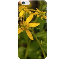 Pollen Gathering iPhone Case/Skin