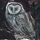 Spotted Owl by WoolleyWorld