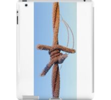 Wired on Ice iPad Case/Skin