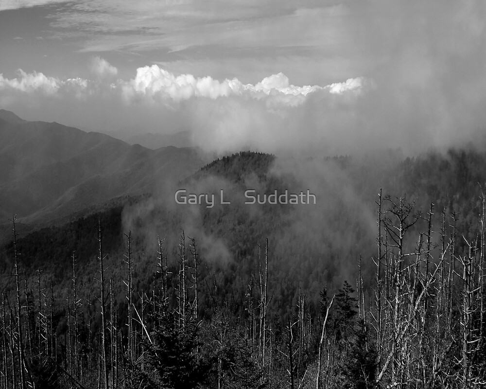 In The Clouds II by Gary L   Suddath