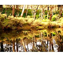 Tranquility!! Photographic Print