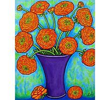 Radiant Ranunculus Photographic Print