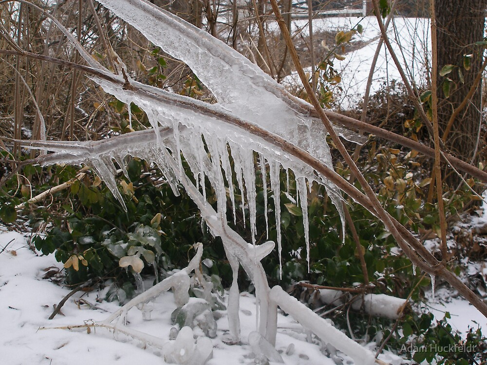 Nature's Ice Sculpture by Adam Huckfeldt