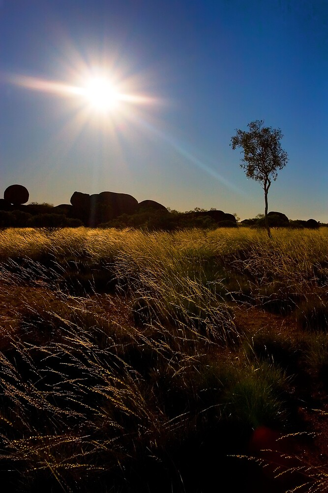 Under the Australian sun by Marianne