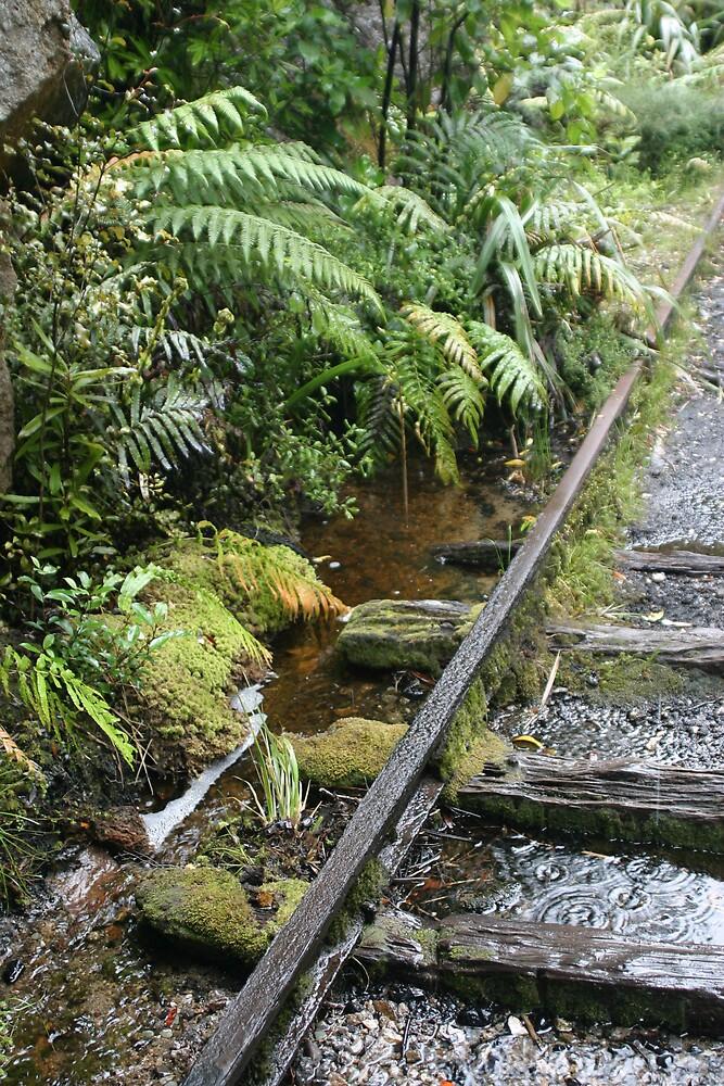Charming Creek  by Danielle Kennedy Boyd