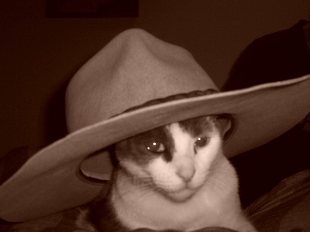 Yeeha Cowboy by cleo01