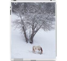 elijah in the snow iPad Case/Skin