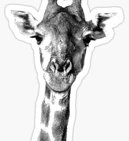 Mr. Giraffe Sticker