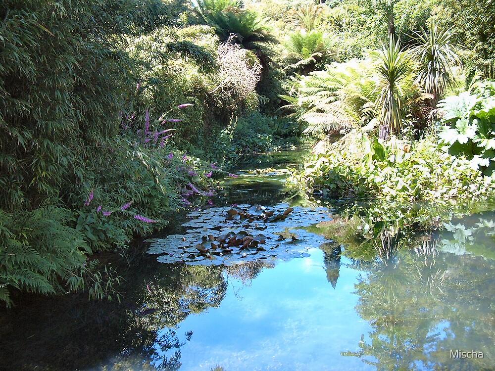 The Lost Water Garden by Mischa