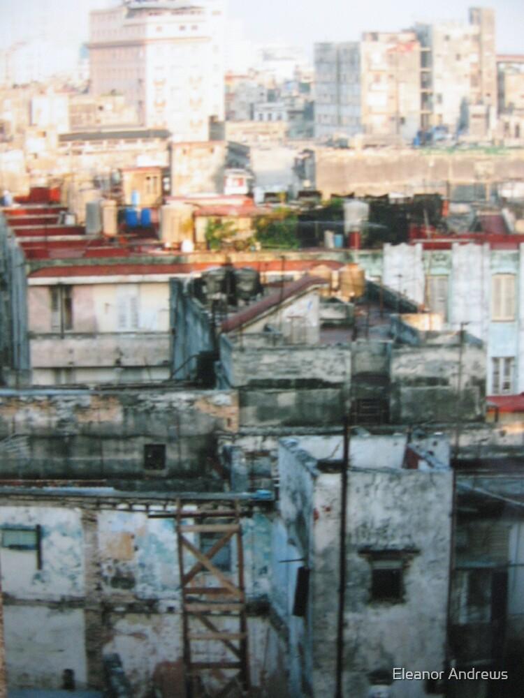 Havana-Mark 2 by Eleanor Andrews