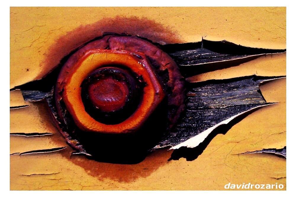A colourful destiny 2 by David Rozario