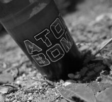 Atomb Bomb by j3sss