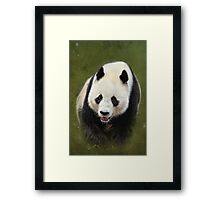 Cuddles Anyone? Framed Print