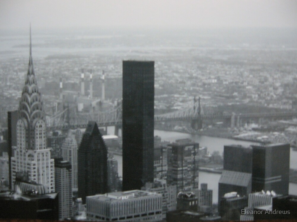 New York City by Eleanor Andrews