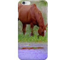 Red horse by the water iPhone Case/Skin