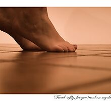 Tread Softly... by finkycake