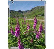 The Coniston Fells iPad Case/Skin