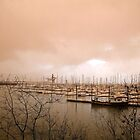 boats by Mark Czerwonka
