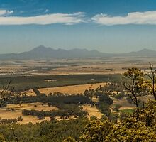 Mist on the Stirling Ranges by Elaine Teague
