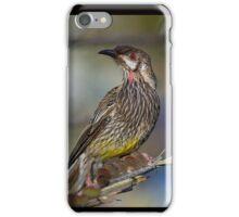 Red Wattle Bird iPhone Case/Skin