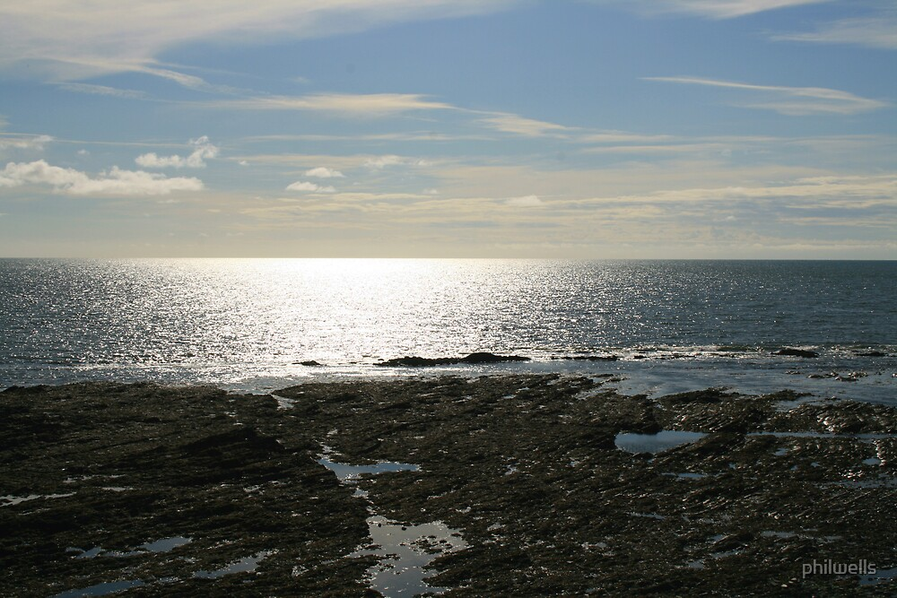 THE COAST AT CARDIGAN BAY by philwells