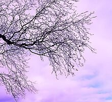 In Touch purple tree by yendesigns