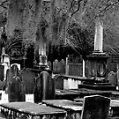 Spooky Graveyard  by Gary L   Suddath