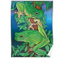 Rainforest Rendezvous Poster