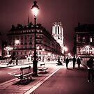 Notre Dame Night 2 by borjoz